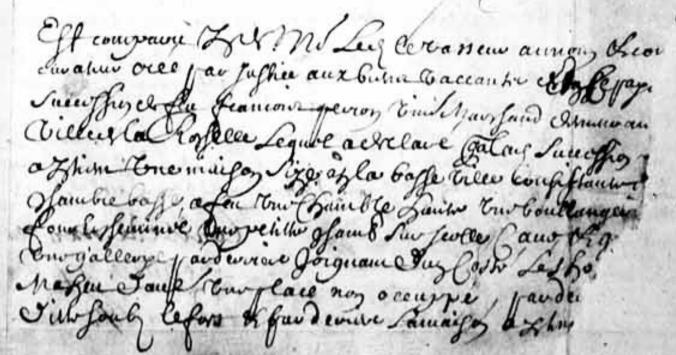 Extrait de la déclaration faite par Jean Levasseur, au nom et comme curateur élu par justice aux biens vacants provenant de la succession de feu François Peron. (Source : BAnQ, Fonds Intendant. E1, S4, SS2, P27)