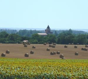 Le village de Thairé, dominé par son donjon fortifié du XIVe siècle. (Source : http://www.thaire.fr)