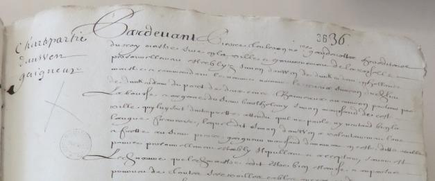 Extrait. Contrat de charte-partie pour l'expédition du navire Le Vieux Siméon à Québec. 28 février 1665. (Source : AD17. Notaire Pierre Teuleron. Registre 3 E 1303, fol. 36)